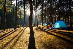 How to set up your tent and campsite