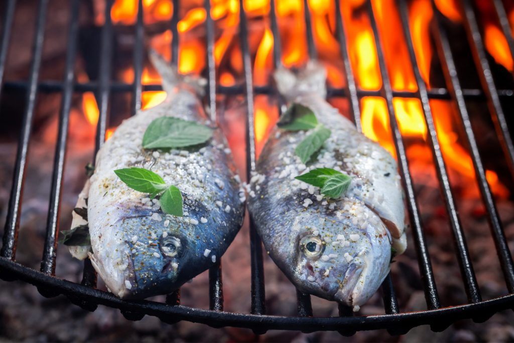 Fish on griddle over campfire