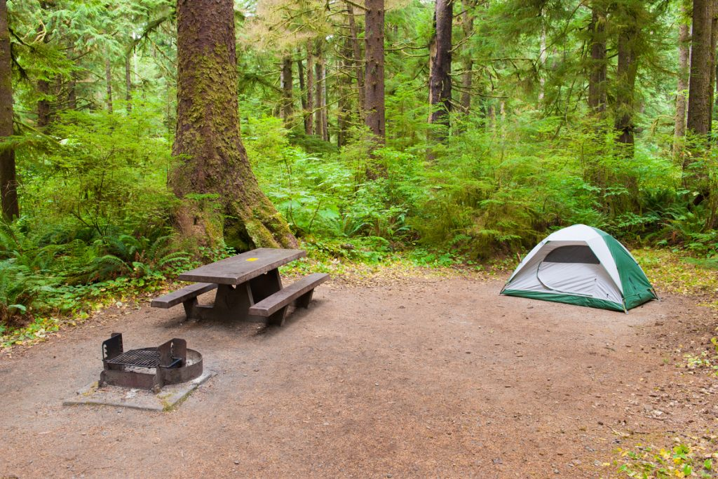 Front country campsite with tent, picnic table and fire ring