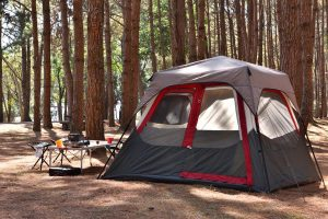 Typical Instant Family Camping Tent